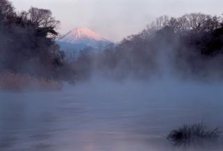 柿田川湧水群の写真