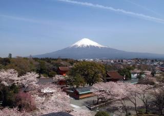 富士山本宮浅間大社の写真
