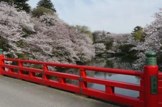 高岡古城公園の写真