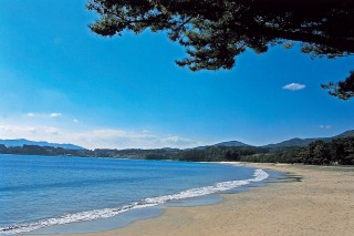 大谷海水浴場の写真