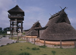 伯耆古代の丘公園の写真