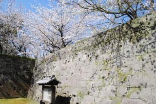 鶴丸城(鹿児島城)の写真