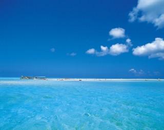 与論島の写真