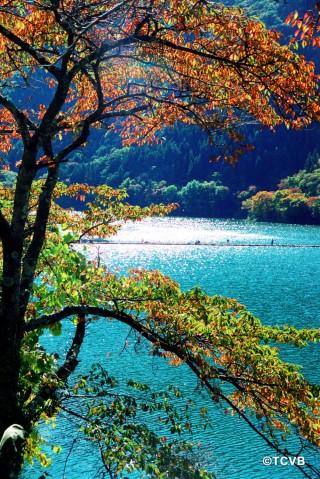 奥多摩湖の写真
