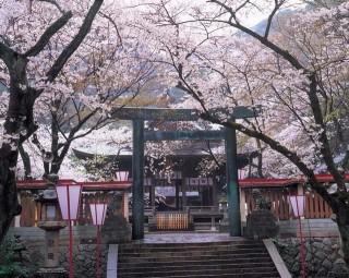 金ヶ崎宮の写真