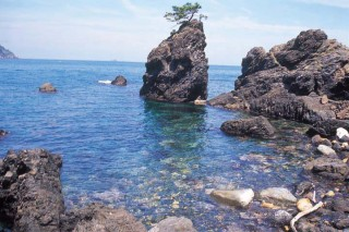 常神半島の写真