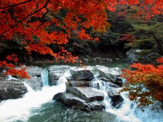 奥津渓の写真