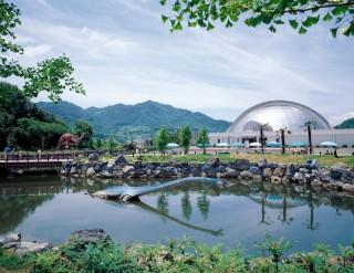 笠岡市立カブトガニ博物館の写真