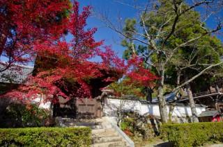 常栄寺雪舟庭の写真
