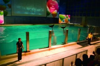 浅虫水族館の写真