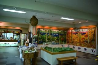 十和田ビジターセンターの写真