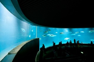 葛西臨海水族園の写真