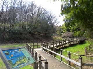 生田緑地の写真