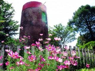 伊香保グリーン牧場の写真