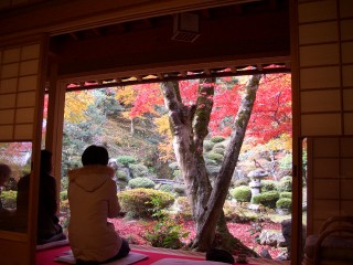 徳源院(清滝寺)の写真