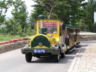 滋賀農業公園 ブルーメの丘の写真