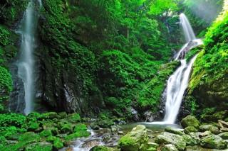 雨乞の滝の写真