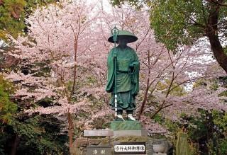 恩山寺の写真