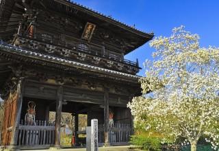 熊谷寺の写真