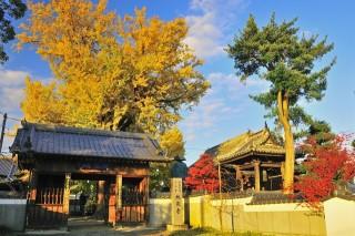 地蔵寺の写真