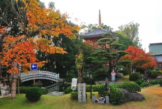 安楽寺の写真