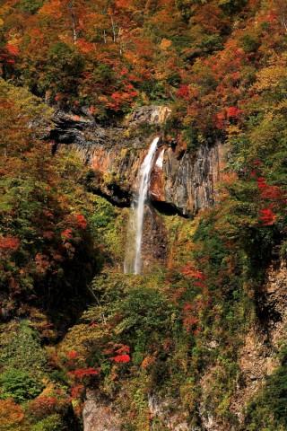燕温泉の写真