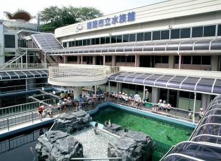 姫路市立水族館の写真