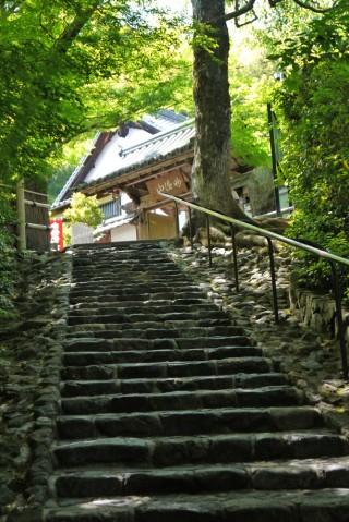 華厳寺(鈴虫寺)の写真