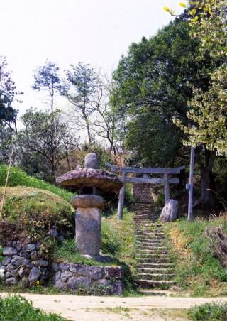 富田茶臼山古墳の写真