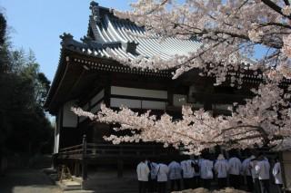 曼荼羅寺の写真