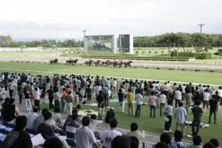 新潟競馬場の写真