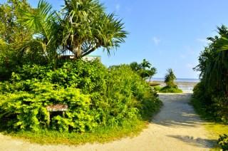 由布島の写真