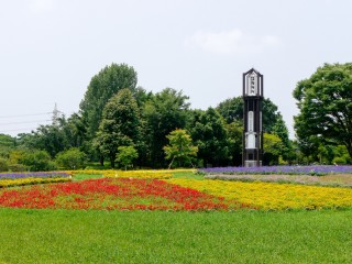 熊本市動植物園の写真
