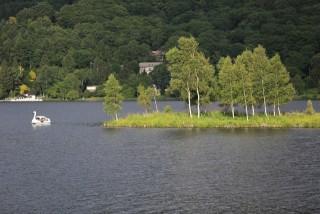 白樺湖の写真