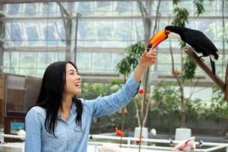 掛川花鳥園(バードパーク花鳥園)の写真