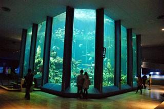 東海大学海洋科学博物館の写真