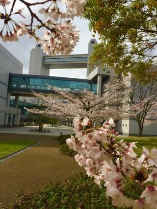 名古屋国際会議場の写真