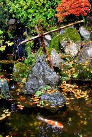 宝泉院の写真