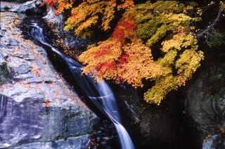 みたらい渓谷の写真