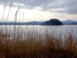 湖山池の写真
