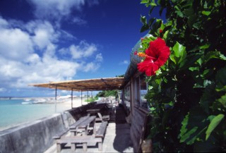 鳩間島の写真