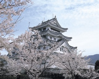川島城の写真