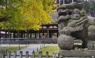 新宮熊野神社の写真