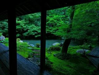 蓮華寺の写真