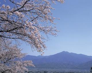 高越山の写真