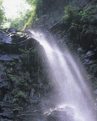 母衣暮露滝の写真