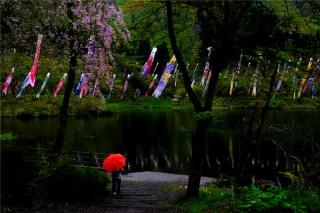 大崎ダム公園の写真