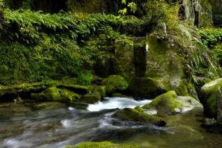 関吉の疎水溝の写真