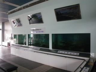 多摩川ふれあい水族館の写真