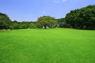 智光山公園の写真